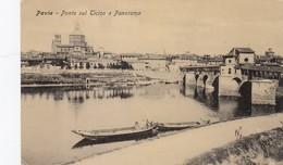 PAVIA-PONTE SUL TICINO E PANORAMA-CARTOLINA  VIAGGIATA IL 1-4-1909 - Pavia