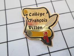 516A Pin's Pins / Beau Et Rare / THEME : ADMINISTRATIONS / COLLEGE FRANCOIS VILLON PLUME ET PARCHEMIN - Administración
