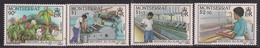 Montserrat 1985 QE2 Set Of 4, Sea Island Cotton Umm SG 645 - 648 ( F425 ) - Montserrat