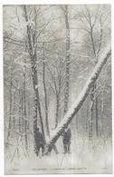 Les Vosges La Chute De L' Arbre Abattu N° 6045 Ad. Weick, éditeur Saint-Dié - France