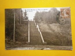Les Cents Marches Au Bois Du Pileu Seine Et Oise,voyagée 1909,très Bel état,pas Commun,envoi En Lettre économique 0,95€ - Francia