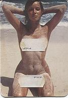 X121796 FEMME A LA PLAGE  ENTIEREMENT NUE SEIN NU SEINS NUS - Erotiques (…-1960)