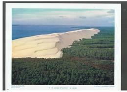Les Paysages D'Aquitaine: Les Landes D.P. N°113 G De Février 1964 Photo N°5 - Reproductions