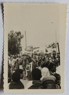 Lieu à Identifier Photographie Fête Chameau Avec Portrait D'un Couple Afrique Maroc ? Algérie ? - Postcards