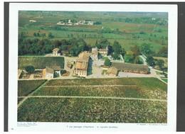 Les Paysages D'Aquitaine: Le Vignoble Bordelais De Château-Lafitte D.P. N°113 G De Février 1964 Photo N°7 - Reproductions