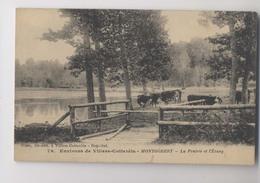 MONTGOBERT  [02] Aisne  - La Prairie Et L'Etang - VACHES - 1917 - Environs De Villers Cotterêts - Otros Municipios