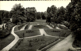 54 Baccarat Parc Municipal La Roseraie / A 620 - Baccarat