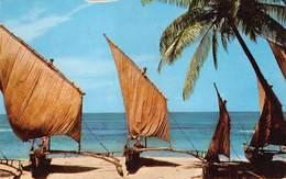 Ceylon   Sri Lanka  Fishing Boats     M 2952 - Sri Lanka (Ceylon)