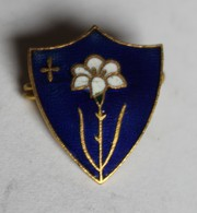 à Identifier Bel Insigne émaillée Fleur Croix Sur Fond Bleu - Abzeichen & Ordensbänder