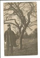 51.601/ Carte Photo Militaire Avec Carcasse De Cheval Dans Un Arbre - (Vienne Le Chateau?) - Autres Communes