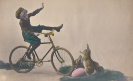CPA - La Bicyclette - Postcards