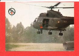 HELICOPTERE MILITARIA Cp Animée Vieux Brisach 273 Edit TAP * Format 15 Cm X 10.5 Cm - Elicotteri