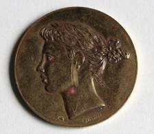 Médaille Alliance Française Gravé Par Belmondo - Frankrijk
