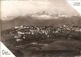 245/FG/20 - MONDOVI' (CUNEO) - Panorama - Cuneo