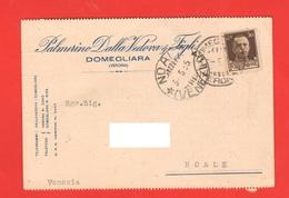 Domegliara Verona Azienda Dalla Vedova Cartolina Commerciale Viaggiata 1935 Per Noale Venezia - Negozi