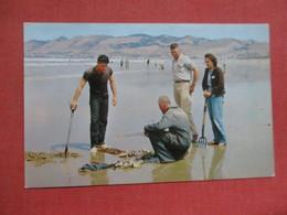 Clammers   Pismo Clams   Pismo Beach California >      Ref 4103 - Vereinigte Staaten