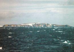 1 AK Antarktis Antarctica * Platter Island * (zu Den Danger Islands) - Die Inseln Liegen Vor Der Antarktischen Halbinsel - Postkaarten