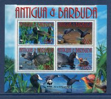 Antigua Et Barbuda - Bloc - WWF - Oiseaux - Neuf Sans Charnière - 2010 - Antigua Et Barbuda (1981-...)