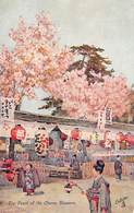 Japan  日本    The Feast Of The Cherry Blossom   M 3036 - Japón