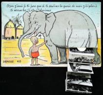 ELEPHANT Exposition Coloniale 1937 (Ancienne Carte De L'exposition)  - Carte à Sytème (Systeemkaart System Card) - Elephants