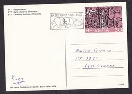 Switzerland: Illustrated Stationery Postcard, 1974, Zoo Basel, Cancel Rhinoceros, Rhino, Wild Animal (traces Of Use) - Suisse