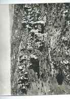 Photo LAPIE : La Cavalerie De MILLAU (Aveyron). Années 60... - Reproductions