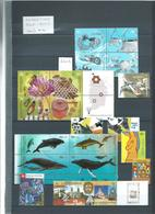 ARGENTINE : Collection Neufs ** Entre 2001 Et 2009 Sur 14 Pages + Divers. - Collections (with Albums)