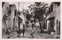 SIDI-BOU-SAÏD:  Une Rue - Tunisia
