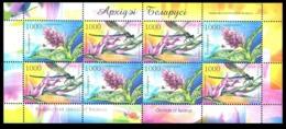 312 - Belarus - 2006 - Orchids Flowers Of Belarus - Sheetlet Of 8v - MNH - Lemberg-Zp - Belarus