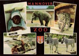 Freizeitpark / Amusementparc / Amusement / Zoo / Wildpark / Hannover (D-A340) - Postkaarten