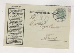 AUSTRIA 1909 WIEN Perfin M.HAMMER Postcard - Briefe U. Dokumente