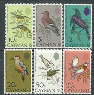 Iles Caïmanes N° 324 / 29 XX  Faune : Oiseaux (I)  La Série Des 6 Valeurs Sans Charnière,  TB - Iles Caïmans