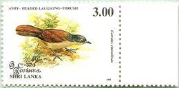N° Yvert & Tellier 1026 - Timbre Du Sri-Lanka (1993) - Neuf - Garrulax Cinereifrons - Sri Lanka (Ceylon) (1948-...)