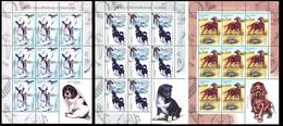 358 - Belarus - 2010 - Dogs Hounds - 3 Sheetlets Of 8v+label - MNH - Lemberg-Zp - Belarus