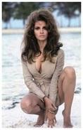 Sexy RAQUEL WELCH Actress PIN UP PHOTO Postcard - Publisher RWP 2003 (21) - Artiesten