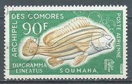 Comores Poste Aérienne YT N°24 Poisson Diagramma Lineatus Oblitéré ° - Poste Aérienne