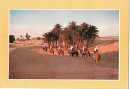 TUNISIE - Caravane En Marche Dans Le Désert - Tunisia
