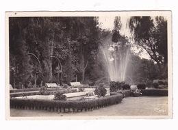Jolie CPM Oujda, Maroc, Le Jardin Public. - Morocco
