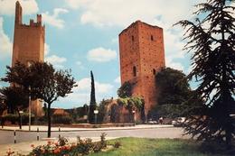 Cartolina - Rovigo - Giardini Pubblici - Le Torri - 1978 - Rovigo