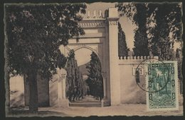 """ALGERIE N° 107 Sur CARTE MAXIMUM, Oblitéré C-à-d """"TLEMCEN 2/11/36"""". 20ct """"Cimetière Musulman à Tlemcen"""". TB - Algérie (1924-1962)"""
