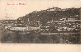 248/FP/20 - MONDOVI' (CUNEO) - Panorama - Cuneo