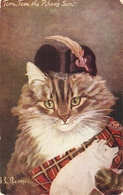 """G.L. Burnes. Cat Studies. Tom, Tom, He Pipers Son""Tuck Oilette PC # 9402 - Tuck, Raphael"