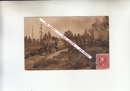 LOGGING TRAIN ,ON THE WAY TO THE MILL.CAL   1900 - United States