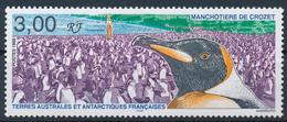 TAAF  -  1999 , Pinguinkolonie - Terre Australi E Antartiche Francesi (TAAF)