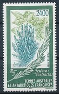 TAAF  -  1999  ,  Schwingel -  Pflanze - Terre Australi E Antartiche Francesi (TAAF)