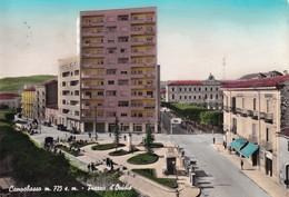Cartolina Campobasso - Piazza D'Ovidio. 1960 - Campobasso