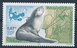 TAAF  -  2000  ,  Erforschung Der Polaren Robben - Terre Australi E Antartiche Francesi (TAAF)
