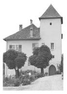 VEYRIER-DU-LAC - Château De Fésigny - Veyrier