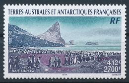 TAAF  -  2000  ,  Pinguinkolonie In Der Larose-Bucht - Terre Australi E Antartiche Francesi (TAAF)