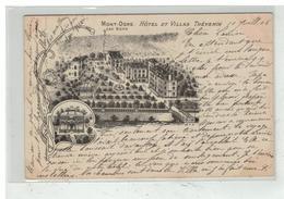 63 LE MONT DORE LES BAINS #11389 HOTEL ET VILLAS THEVENIN - Le Mont Dore